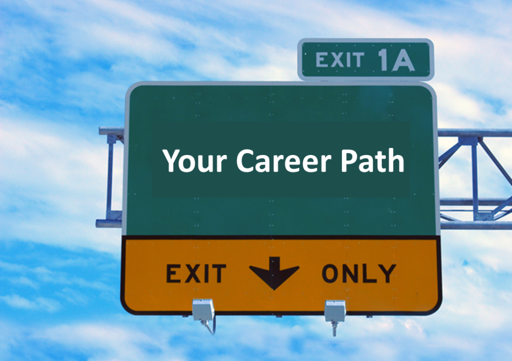 essay about career path